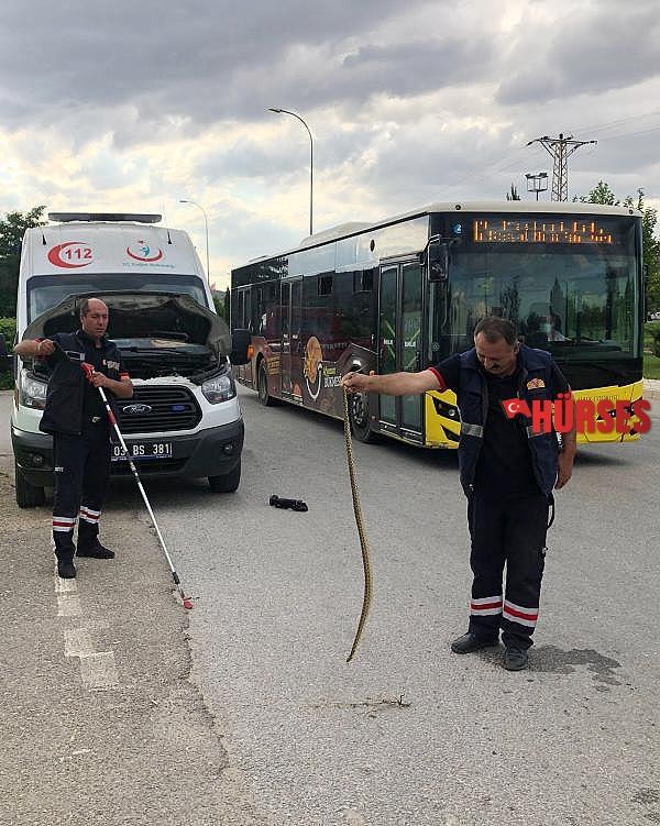 2021/07/ambulansa-giren-yilani-itfaiye-cikardi-27cfcd494cba-2.jpg