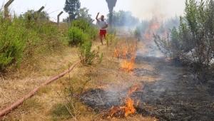 Antalya'da ot yangını korkuttu
