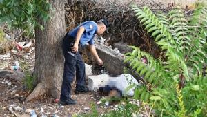 Arazide erkek cesedi bulundu