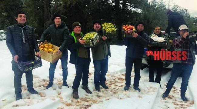 Antalya'da yaban hayatı kış yemlemesi