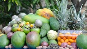 Tropikal meyvelere yoğun ilgi var