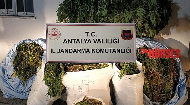 Antalya'da 161 kilo uyuşturucu madde ele geçirildi