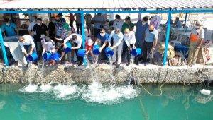 Finike'de 5 bin yavru levrek denize bırakıldı