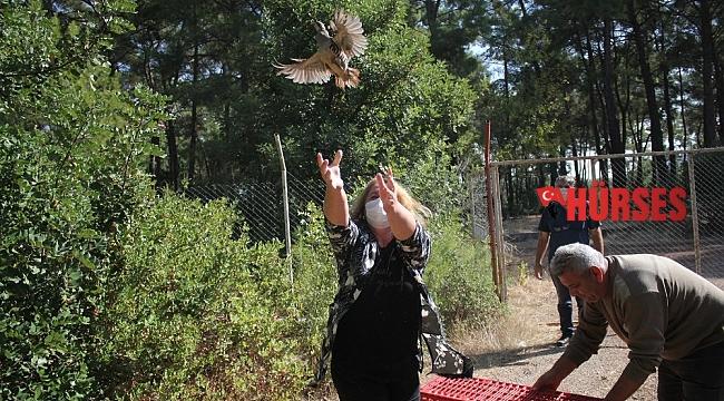 Kemer'de 240 Kınalı Keklik doğaya salındı