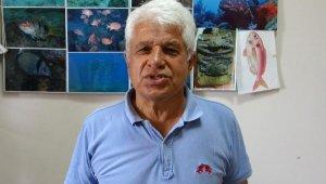 Prof. Dr. Gökoğlu: Denizde, kıyıda balon balığı görmeye alışmalıyız