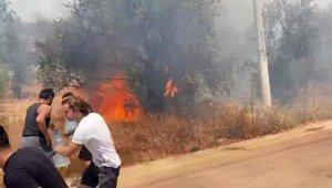Kaş'ta çıkan yangında, 3 hektar zeytinlik yandı