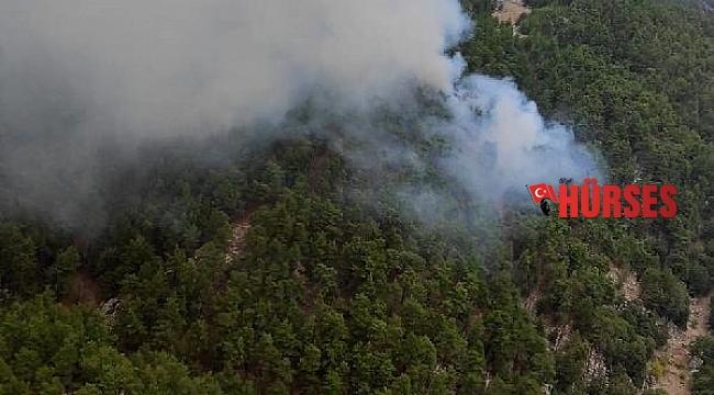Manavgat'ta orman yangını; 5 saatte kontrol altına alındı - Yeniden