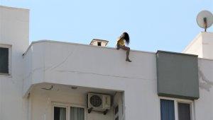 Sevgilisinden ayrılan genç kız çatıya çıktı