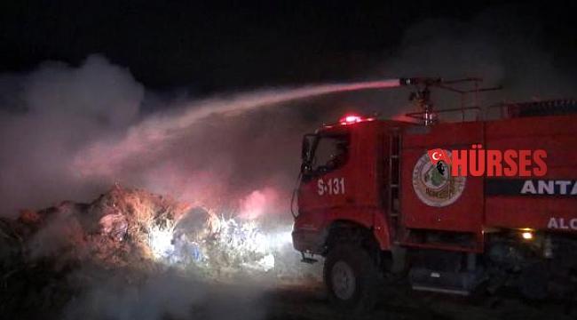 Manavgat'ta sazlık yangını