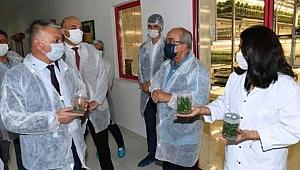 Tarımsal üretimde verim ve kaliteyi arttırmalıyız