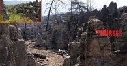 226 orman yangını
