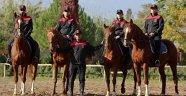 Atlı polise ilgi