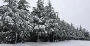 Kar, ulaşımı aksatıyor