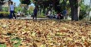 Sıcakla gelen sonbahar görünümü