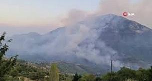 Manavgat ve Akseki'deki ormanı bin TL karşılığında çıkarmış