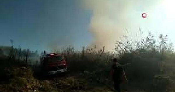 Yapı malzeme deposu yakınındaki sazlık yangını korkuttu