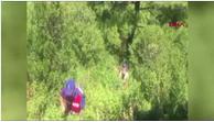 Ormanda Hint keneviri operasyonu